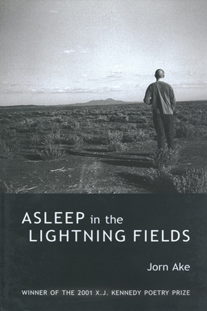 Asleep in the Lightning Fields by Jorn Ake